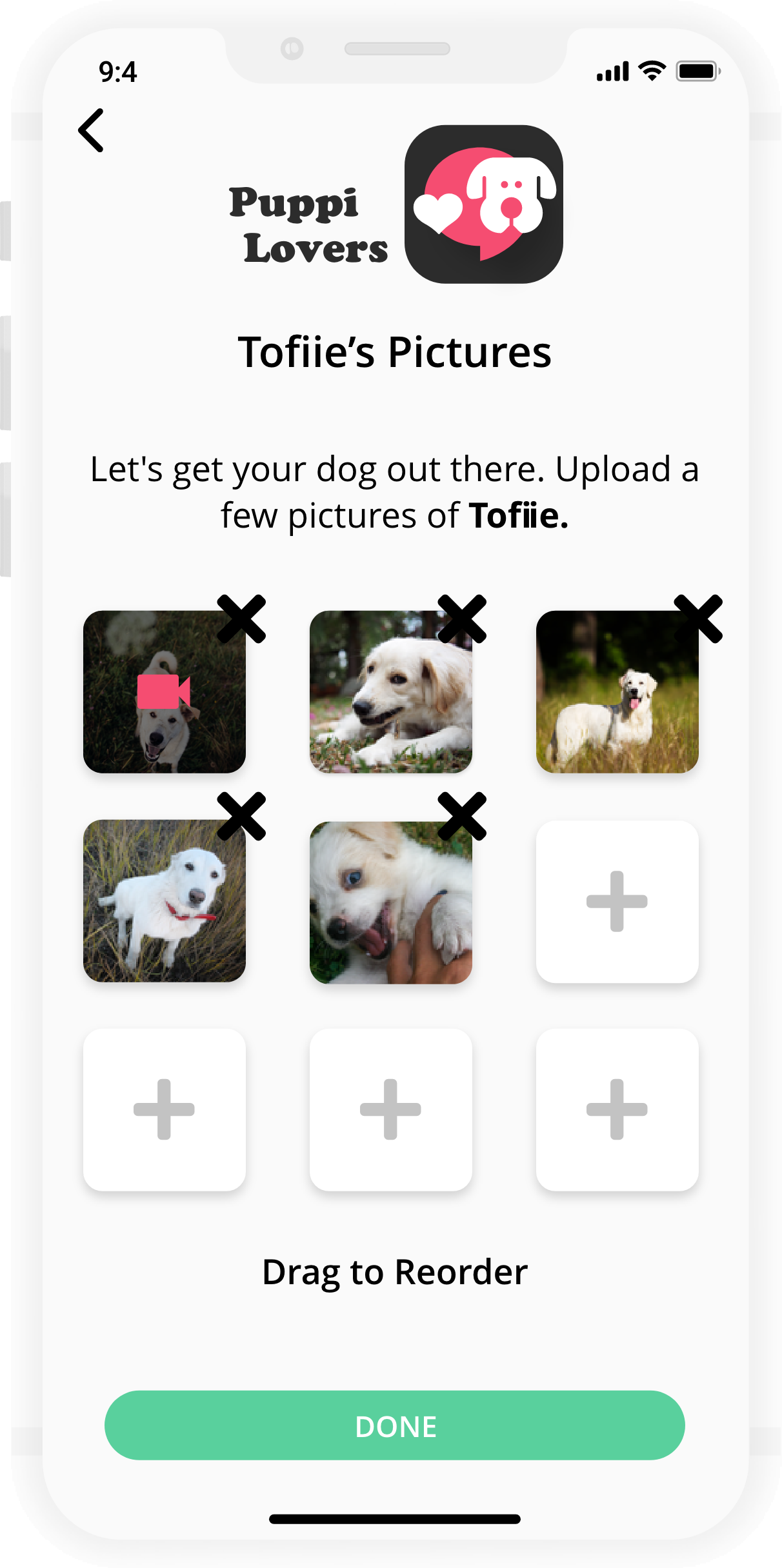 Set up your pooch's profile-n