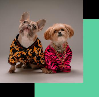 puppi-lovers-member-benefits-puppi-lovers-membership-puppi-lovers-partner